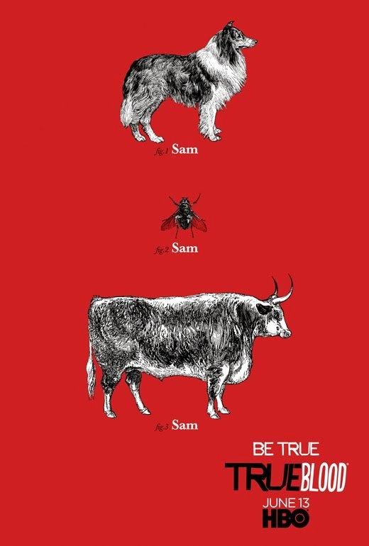Sam Merlotte. True Blood.