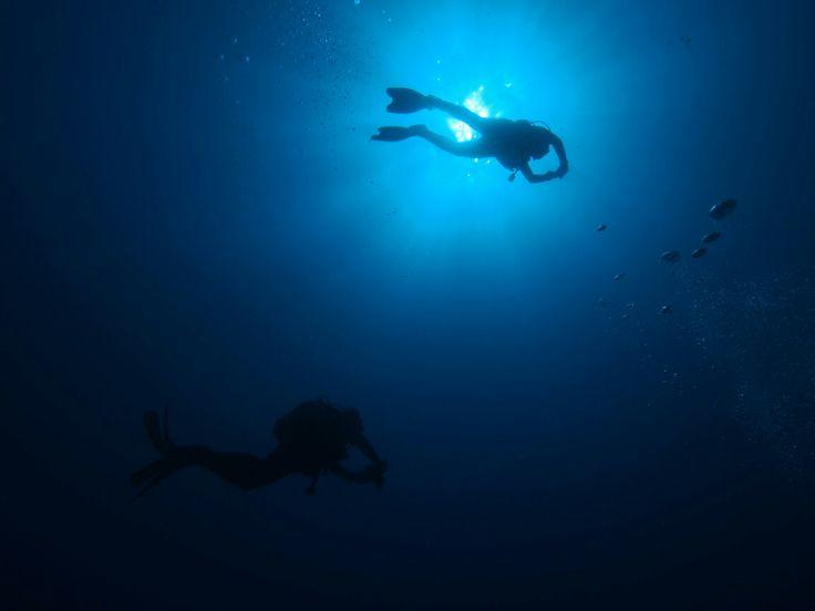 Ayvalık dalış okulu - ida dalış merkezi #scuba #scubadiving #diving #underwater #dalisnoktam #ayvalikdalis #ayvalikscuba #daliskursu #dalisokulu #dalismerkezi #idadiving #idadalismerkezi www.idadiving.com