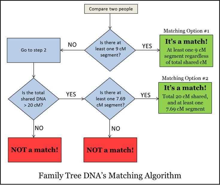 Family tree dna genealogy google search dna pinterest dna family tree dna genealogy google search dna pinterest dna genealogy genealogy and family trees ccuart Gallery