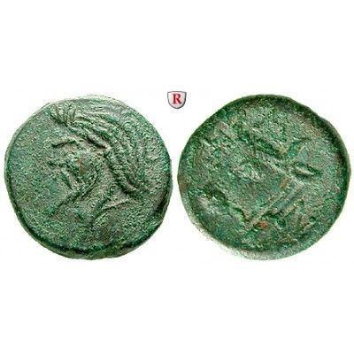 Stunning Taurische Chersones Pantikapaion Bronze um v ss Bronze mm um v Kopf des Pan l Stierkopf l