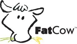 InMotion Review : GET A BETTER HOSTING PLAN WITH THE HELP OF FATCOW REVIEW