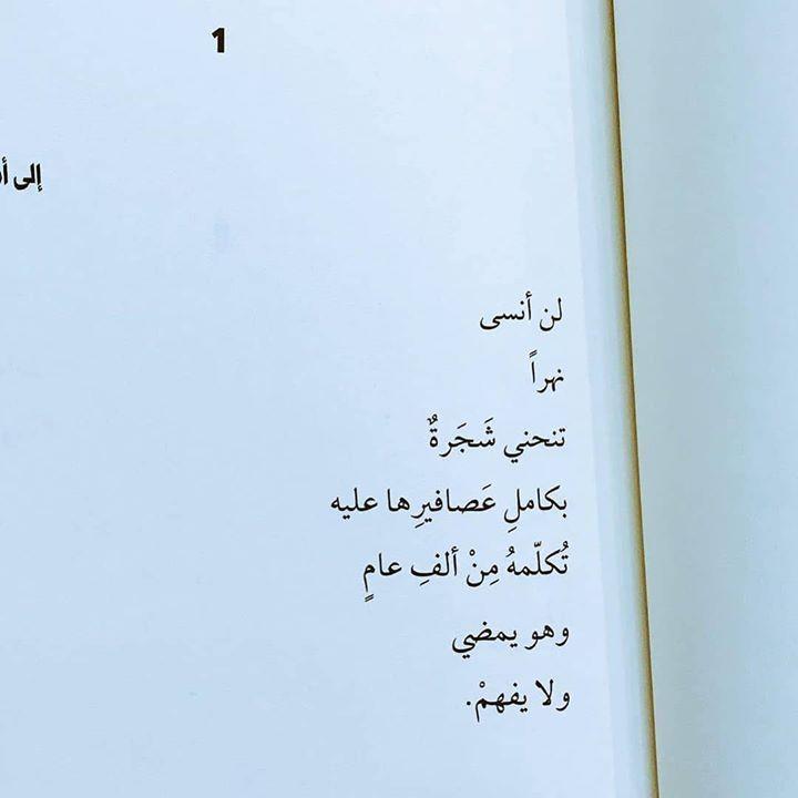 لن أنسى نهرا تنحني شجرة بكامل عصافيرها عليه تكلمه من ألف عام وهو يمضي ولا يفهم Https Instagr Am P Ca4ktghg2nn Calligraphy Arabic Calligraphy