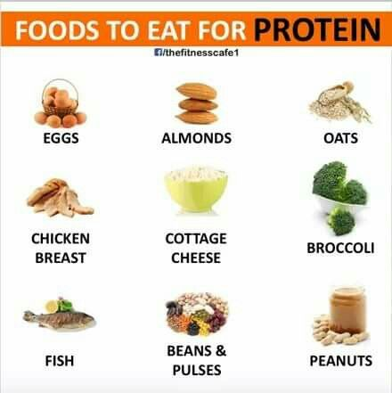 Foods for PROTEIN