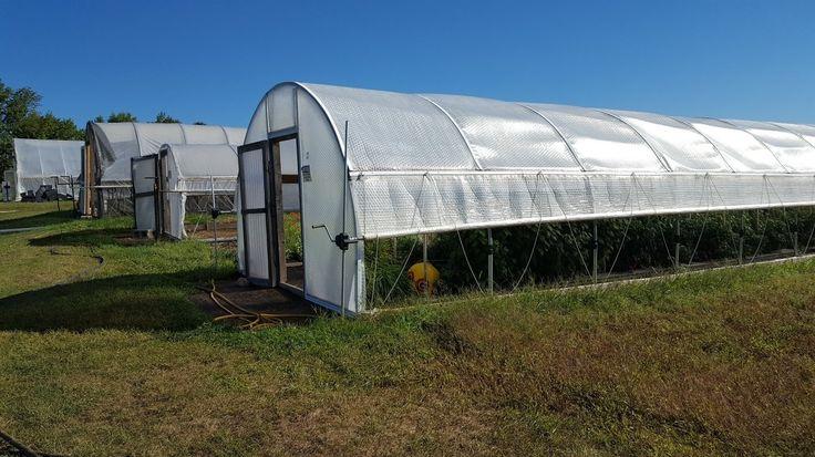 Greenhouse w/ Tufflite greenhouse film