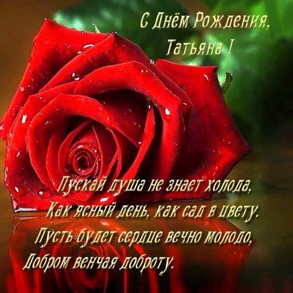 Dmitriy Kretov On Twitter Cards