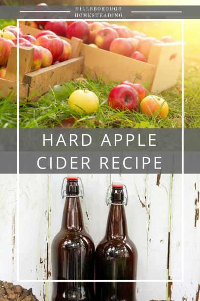 Easy to make Hard Apple Cider. Take ugly apples or apple scraps from baking and ferment them to make a delicious alcoholic drink! Recipe and bottling instructions. | Hillsborough Homesteading