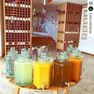 Shot of the Day.  We LOVE this.  #TawletAmmiq, the #Eco #Restaurant by #SoukElTayeb  Saturdays & Sundays and private functions ofcourse.  03.004.481.  #Repost @livelovebekaa ・・・ Pick your color  #TawletAmmiq by @oneplatetwoforks #LiveLoveBekaa