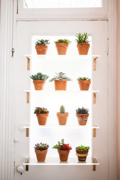 21 Clever Ways To Build A Garden In A Space Space in 2019