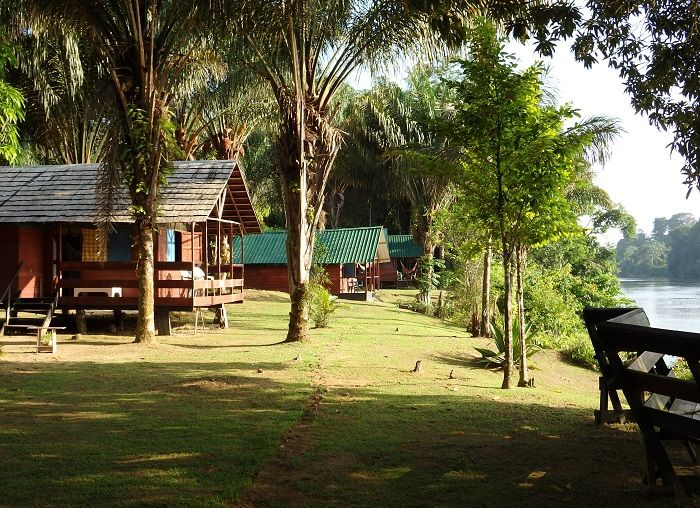 Jungle Resort Pingpe suriname