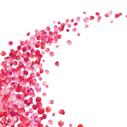 ピンクのバラの花びら vortex ベクターアートイラスト