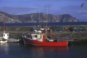 Achill Sea Angling -