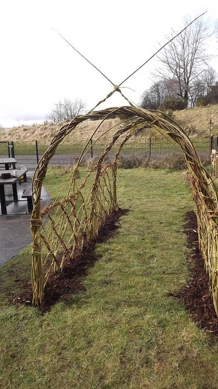 would be cool for ducks....Living willow structures