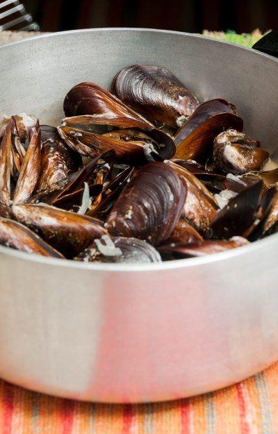 Receita: Mexilhão à provençal (moules et frites) | Cozinha do João