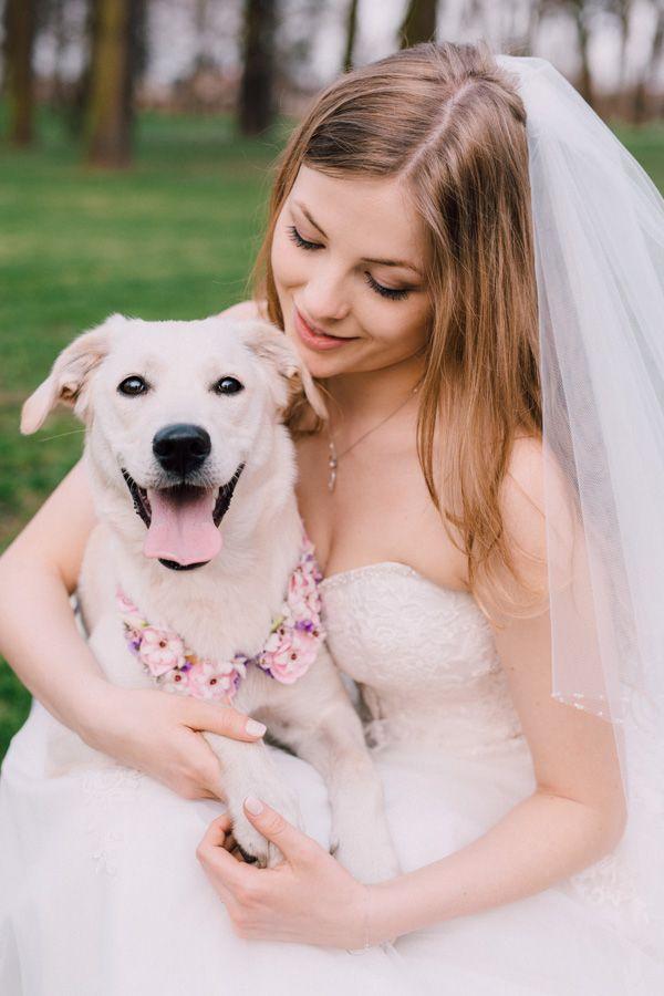 dog photo session / flowers and dog / happy dog / sesja ślubna z psem / dekoracja kwiatowa dla zwierzaka / fot. Bajkowe Śluby