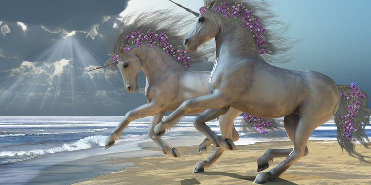 unicorns | unicorns