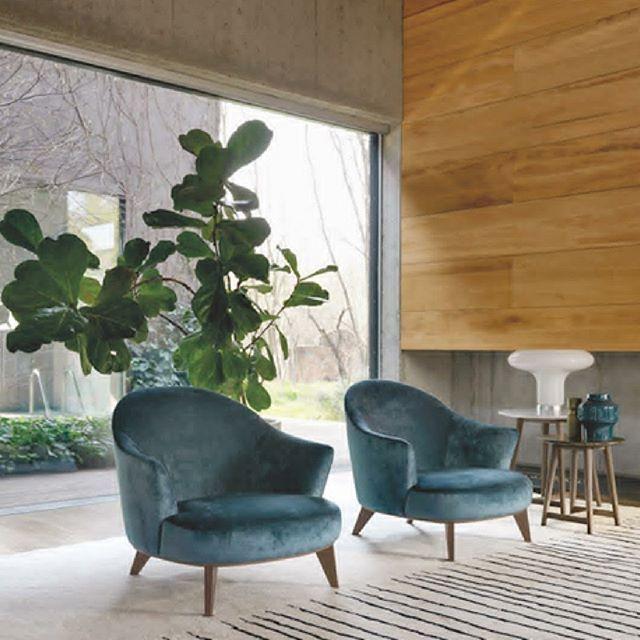 Poltronas ALASIA diseñadas por Setsu & Shinobu Itorealizadas por DESIRÉE Italia base en madera y formas curvas constituye una pieza de diseño siempre actual. #AmbientesConEstilo