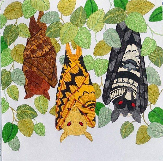 192 Best Color Book Tropical Wonderland Millie Marotta Images On Pinterest
