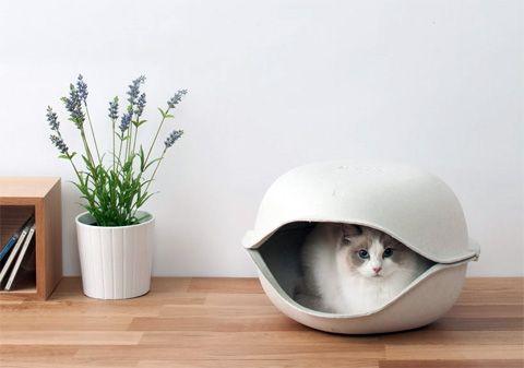 Разработанный Oppo , японской компании, специализирующейся на инновационных творений для животных, кошек Shell Кровать представляет собой стильный обитания для кошек или небольших размеров собак. Оболочка в форме кровати имеют гладкие круглые контуры и прийти в мягкой белого цвета.
