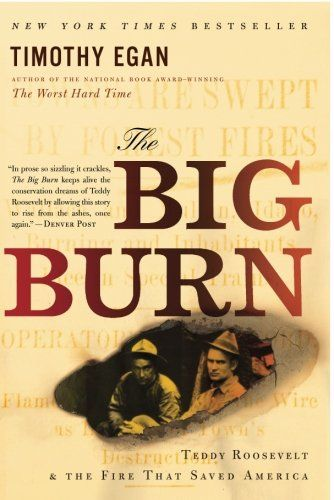 The Big Burn: Teddy Roosevelt and the Fire that Saved Ame... https://smile.amazon.com/dp/0547394608/ref=cm_sw_r_pi_dp_WTlExbE3W9PR2