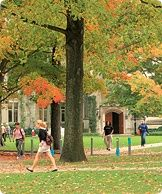 Princeton's campus is located on 500 acres in central New Jersey. The University's Office of Sustainability focuses on areas such as energy conservation, where it has been a leader, and coordinates other environmental efforts. Google Image Result for http://www.princeton.edu/wwwmain_internal/gxml!0/meor6fczezt3az09qxq09h2sbx1mon7%24e6jaxdbw8ryiuq1j92cwjhb7710k1h4