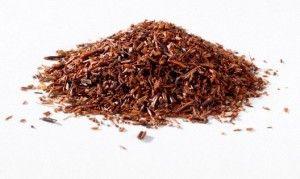 Le rooibos : cousin sud africain du thé venu pour conquérir le monde !