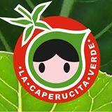 TALLER INFANTIL DE HUERTO ECOLÓGICO ecoagricultor.com