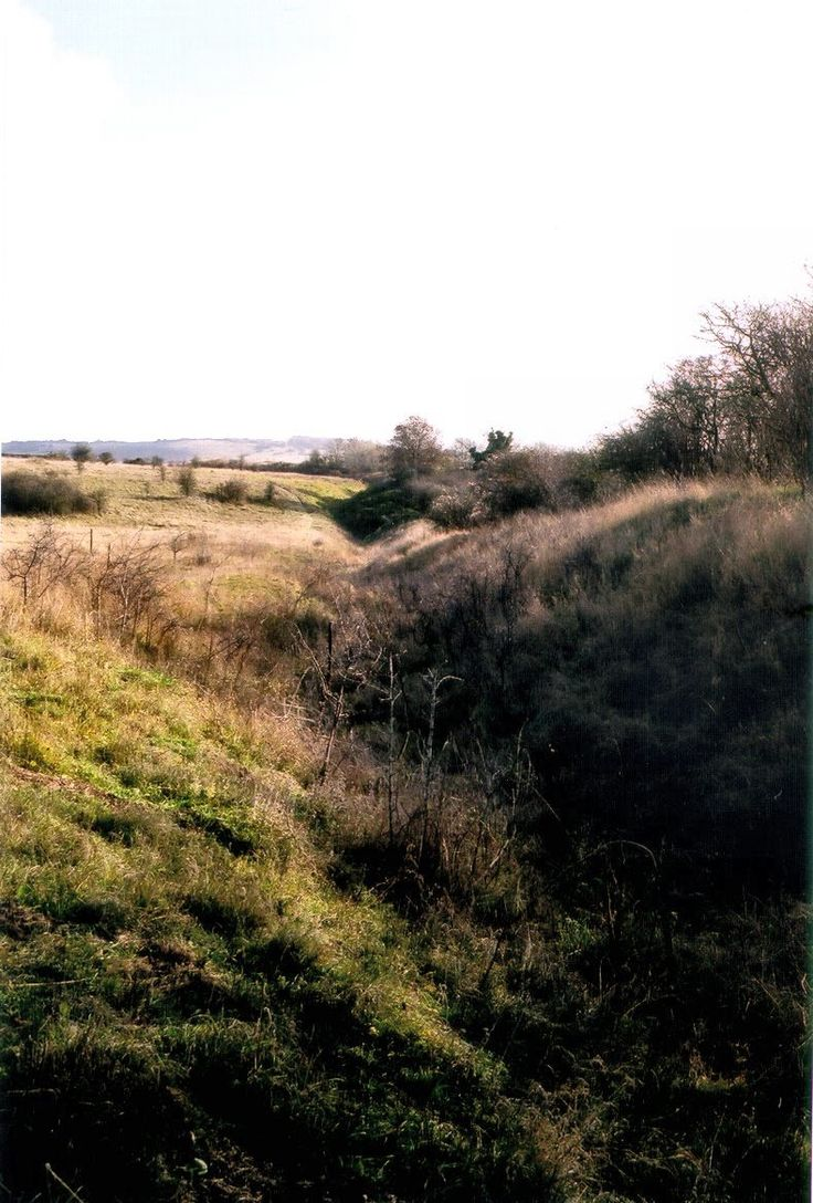 Bokerley Dyke