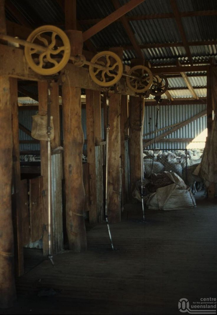 Shearing Shed in country Australia.