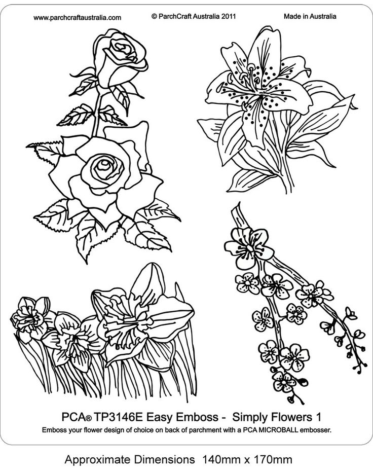 PCA EASY EMBOSSING TEMPLATE - 3146E SIMPLY FLOWERS 1    Easy embossing template, Simply Flowers 1. Use a PCA micro and small ball tools and this template to create a beautiful flower motifs on your designs. Simply place the parchment over the template and follow the lines with a ball tool. PCA recommend lubricating the parchment with a tumble dryer sheet before embossing.