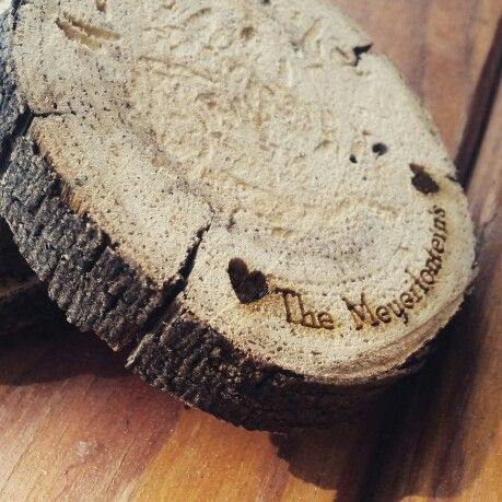 Coasters. Cut from a branch ang engraved. Love! - by Soenchie