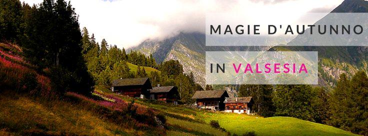 Magie d'autunno in Valsesia. #Montagna #autunno #Piemonte #MonteRosa