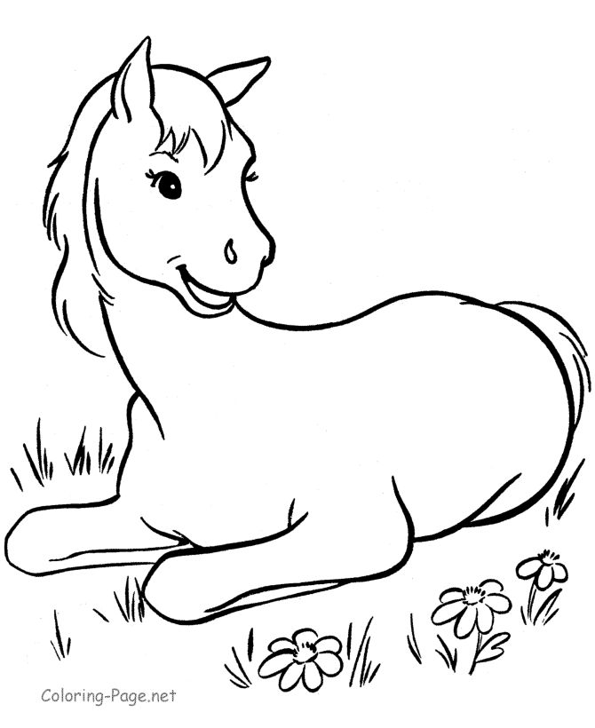 118 best images about horse color pages on Pinterest  Coloring