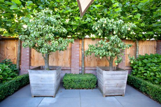 88 best Garten images on Pinterest Decks, House porch and Small