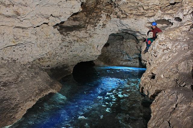Ocala Caverns: Marion County, Florida