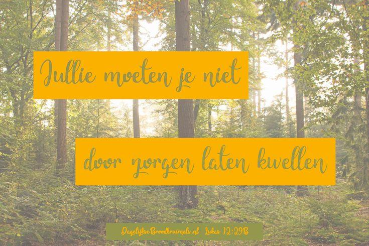 Jullie moeten je niet door zorgen laten kwellen. Lukas 12:29b  #Zorgen, #Kwellen  https://www.dagelijksebroodkruimels.nl/lukas-12-29-b/