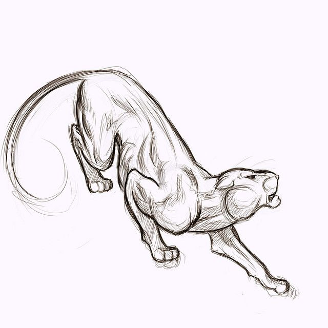 Black Panther Drawings | These panther tattoo designs were created by various artists and are ...