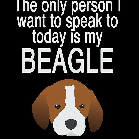 The only person I want to talk to is my BEAGLE!