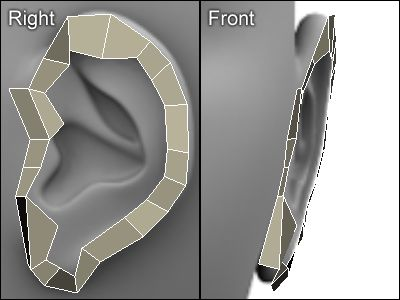 3D modeling an ear with polygons in 3D Studio MAX