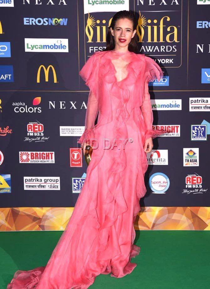 IIFA 2017: Shahid-Mira, Salman, Katrina wow fans in New York - Entertainment  #middaybollywood #bollywoodfashion #bolywoodphotos #bollywoodmovies #bollywoodphotos #bollywoodinstant #bollywoodactors #entertainment #iifa'17