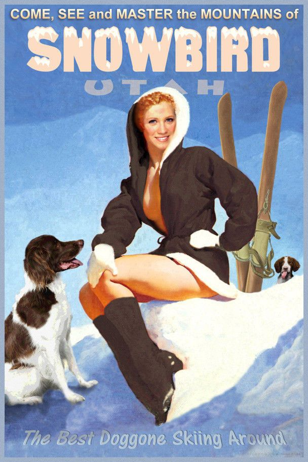 Snowbird Utah Snow Ski Travel Poster Brittany Spaniel Dogs Pin Up Art Print 328