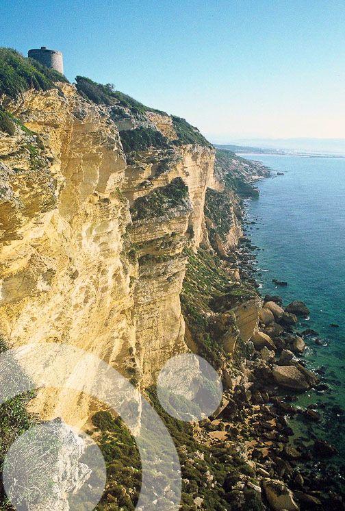 La Breña, in Cadiz. More information to plan your trip to #Vejer in www.qnatur.com