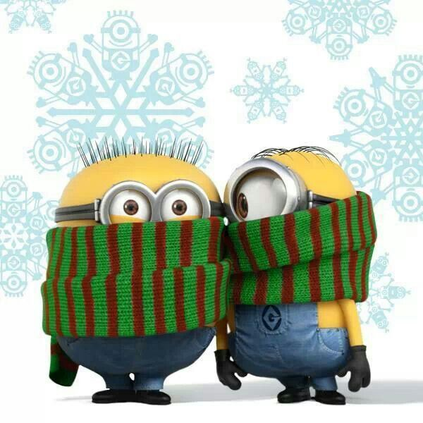 Image result for Winter Minion