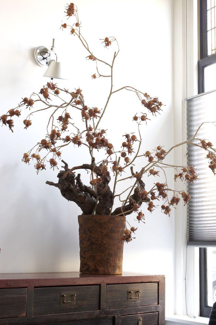 Mooi wonen is een kunst. Het vraagt om een creatieve artiest. Natuur in je huis www.martkleppe.nl