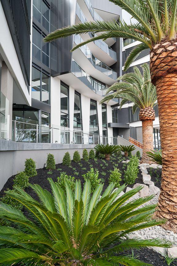 Caroline Serviced Apartments - Sandringham in Sandringham, VIC