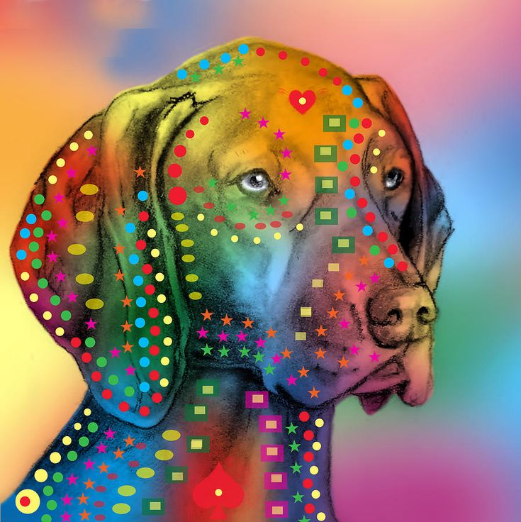 German Shorthaired Pointer rainbow print