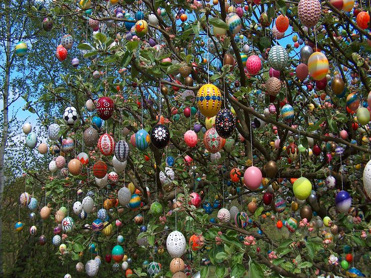 The Volker Easter Egg Tree.  Beautiful!