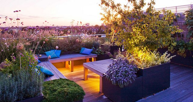 Large Roof Garden | Benches surrounded by fragrant herbs, perennials and grasses lit at night | Charlotte Rowe Garden Design