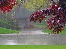 Resultado de imagen para lluvia