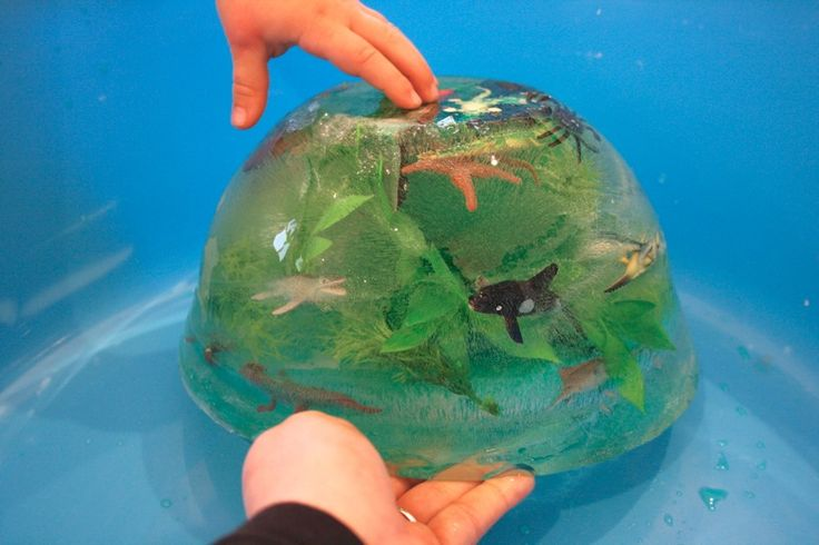 Fun engaging activity with a little planning, but few supplies. Create a frozen ocean full of sea creatures in need rescuing.