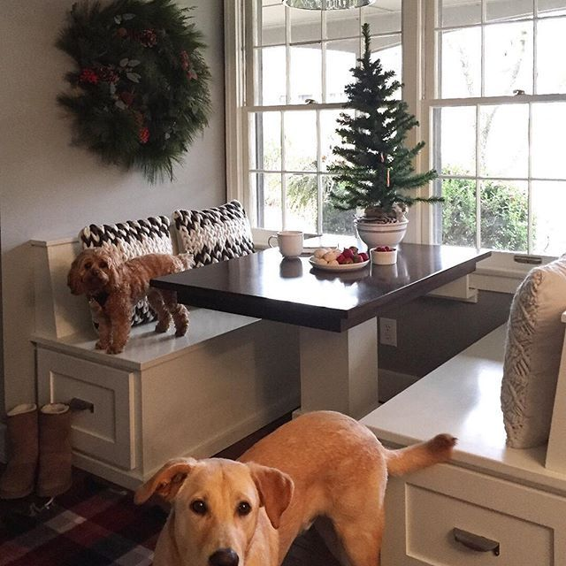You Re Amazing Dog: 25+ Best Ideas About Dog Nook On Pinterest